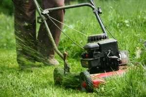 prace w ogrodzie